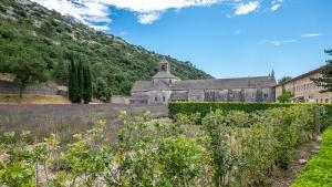 Gordes +  Kloster Senanque